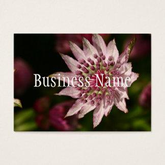 Pink Astrantia Business Card
