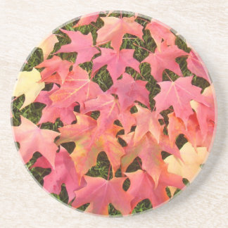 Pink Autumn Leaves sandstone coasters gifts