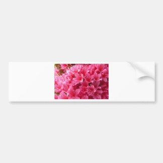 Pink Azalea Bumper Sticker