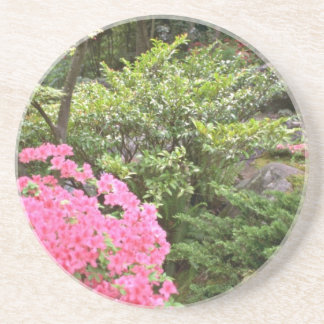 Pink Azalea Bush Amid Shrubs flowers Drink Coasters