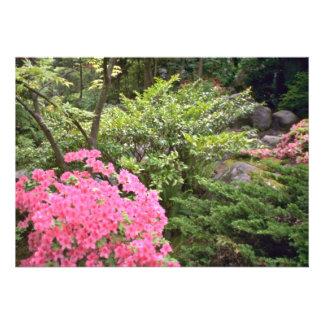 Pink Azalea Bush Amid Shrubs flowers Custom Invites