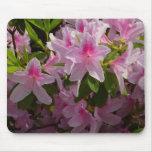 Pink Azalea Bush Spring Flowers Mouse Pad