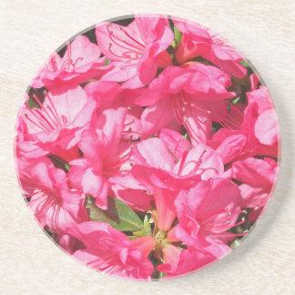 Pink Azalea Coasters