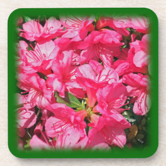 Pink Azalea Beverage Coasters