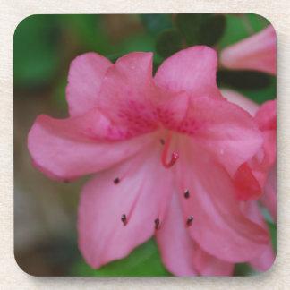 Pink Azalea Cork Coasters
