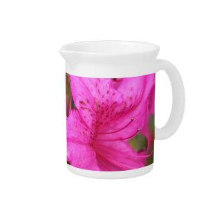 pink azalea flowers,  杜 鹃 花. pitcher