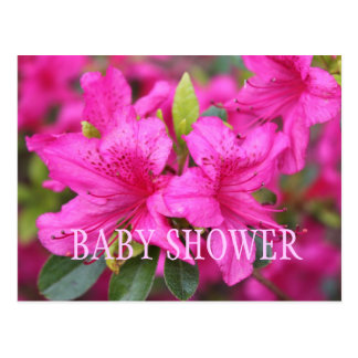Pink azalea flowers baby shower party invitations. postcard