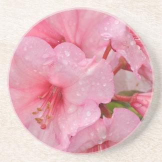 Pink azalea flowers drink coasters