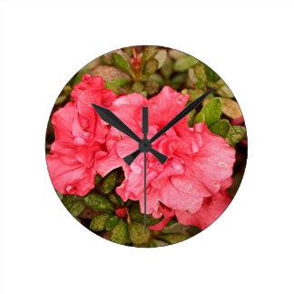 Pink azalea flowers in bloom wallclocks
