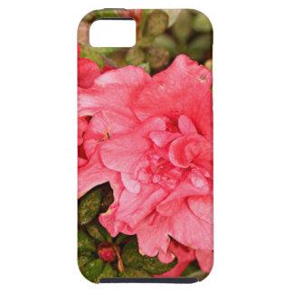 Pink azalea flowers in bloom iPhone SE/5/5s case