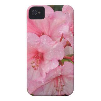 Pink azalea flowers iPhone 4 Case-Mate cases