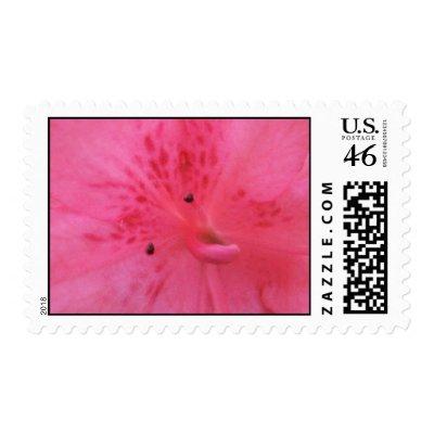 Pink Azalea Stamp $ 19.45