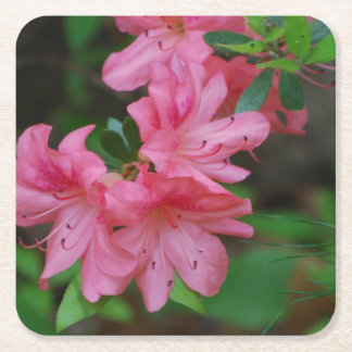 Pink Azalea Square Paper Coaster