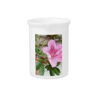 Pink Azaleas 1 Enhanced Drink Pitcher