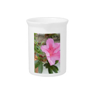 Pink Azaleas 1 Photo Drink Pitcher
