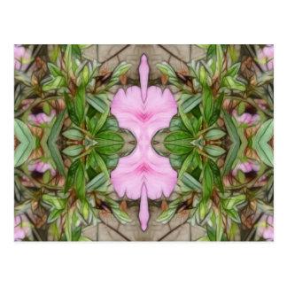 Pink Azaleas 1E kaleidoscope 2 Postcard