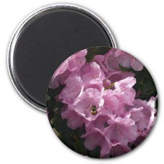 Pink Azaleas & Bee, Rhododendron Garden Flowers 2 Inch Round Magnet