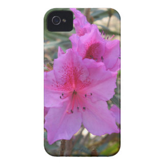Pink Azaleas Blackberry Bold Cover Case