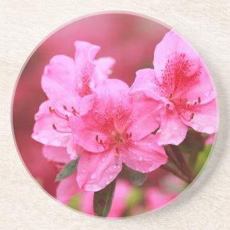 Pink Azaleas Beverage Coaster