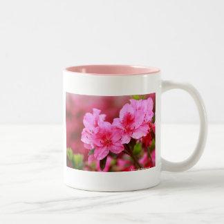 Pink Azaleas Mugs