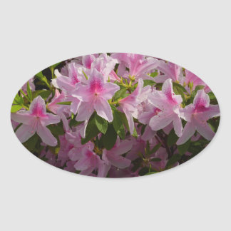 Pink Azaleas Sticker Oval Sticker