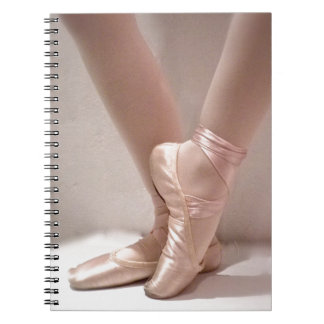 Pink Ballet Slippers Spiral Notebook