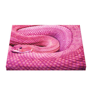 Pink Basilisk Rattlesnake Canvas Print