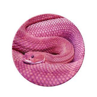 Pink Basilisk Rattlesnake Plate