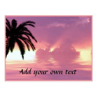 Pink Beach Sunset Postcard