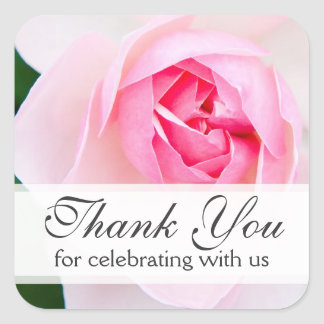 Pink beautiful rose wedding thank you thanks square stickers