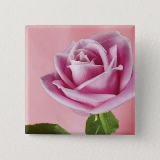 pink_beauty_(14) pinback button