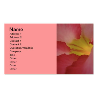 pink_beauty_ (19) Double-Sided standard business cards (Pack of 100)