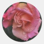 Pink Beauty Classic Round Sticker