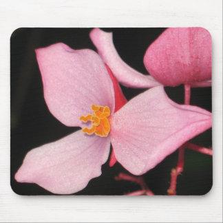 Pink Begonia Mousepad