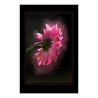 Pink Berber Daisy 23x35 Poster