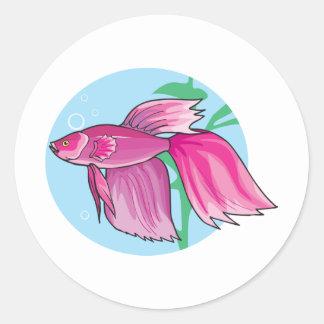 pink beta fish classic round sticker