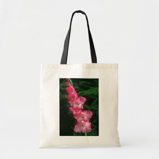 Pink Big Time Gladiolus flowers Budget Tote Bag