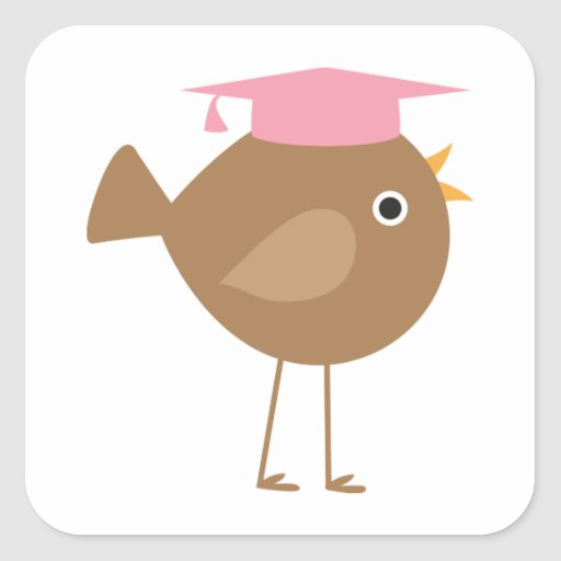 Pink Bird Graduation Square Sticker