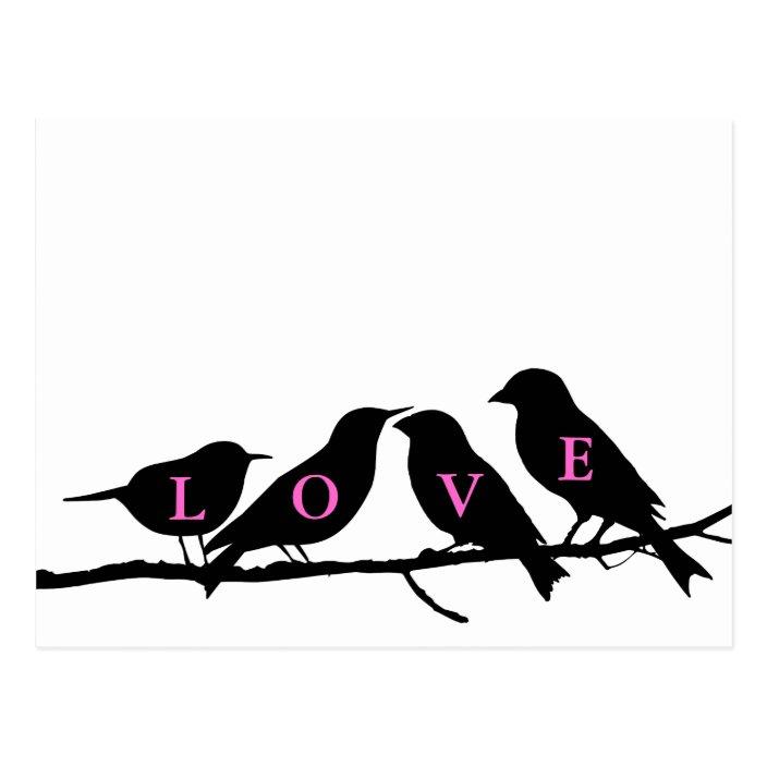 Pink Black And White Love Birds Postcard Zazzle Com
