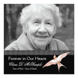 Pink Black Dove Womans Photo Funeral Announcements
