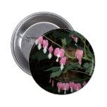Pink Bleeding Heart Pinback Button