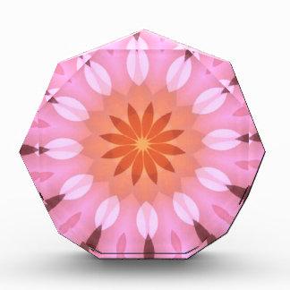 Pink Blends into Tangerine Flower Kaleidoscope Acrylic Award