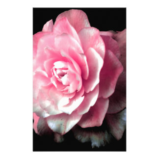 Pink Bloom with Black Background Stationery