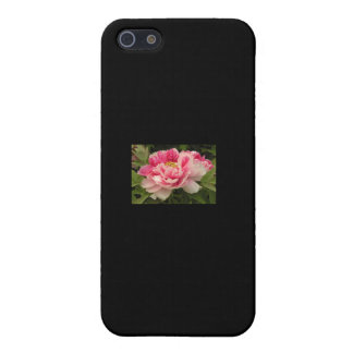 PINK BLOOMING PEONY IPHONE CASE