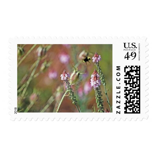 Pink Blooms and Bumble Bee Postage