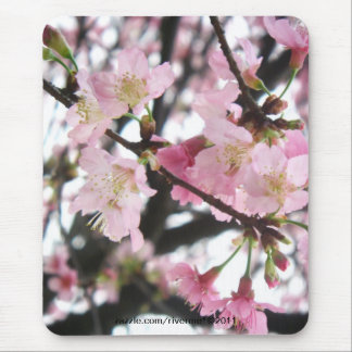 Pink Blooms/Cherry Blossoms Mouse Pad