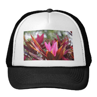 pink blooms trucker hat