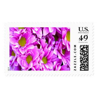 Pink Blooms Large Postage Stamp