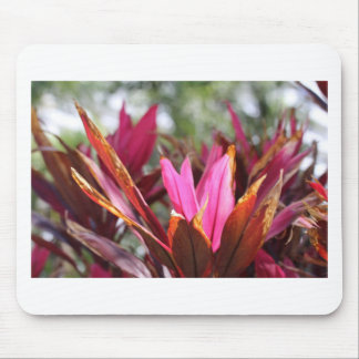 pink blooms mouse pad