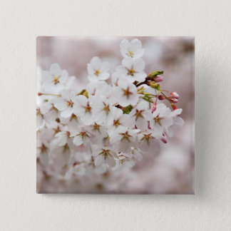 Pink Blossom Buds Pinback Button